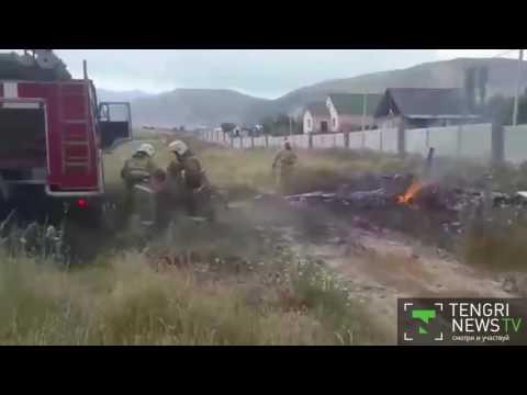 Відео з місця падіння літака поблизу Алмати