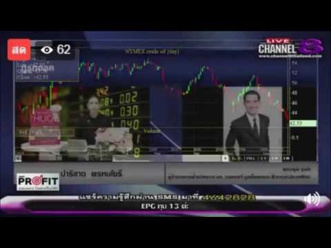 Take Profit by YLG 22-06-60