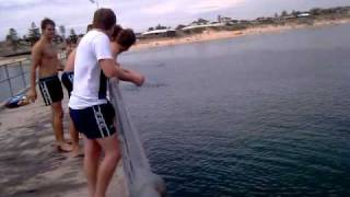 Port Noarlunga Australia  City pictures : Port Noarlunga Jetty, South Australia