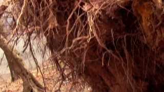 Nonton Mystic Sword (by Dan Halpern) Film Subtitle Indonesia Streaming Movie Download