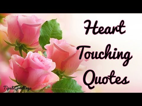 Best quotes - Most Heart Touching Quotes  The best Love Quotes Ever,Messages-To dedicate