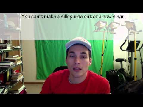 La Frase del Día - Día ciento dieciocho - Sie können  't einen Seidengeldbeutel aus einer Sau ' s Ohr