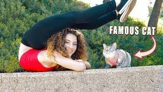 Video I GOT A CAT!?!? (Nala Cat) MP3, 3GP, MP4, WEBM, AVI, FLV Juli 2018