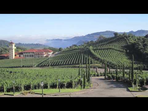 10 best wine travel destinations 2013