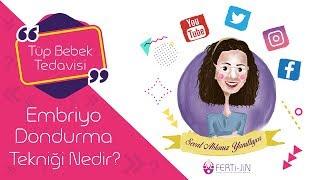 Op Dr Seval Taşdemir - Embriyo Dondurma Tekniği Nedir?