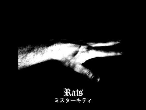Mr. Kitty - Rats