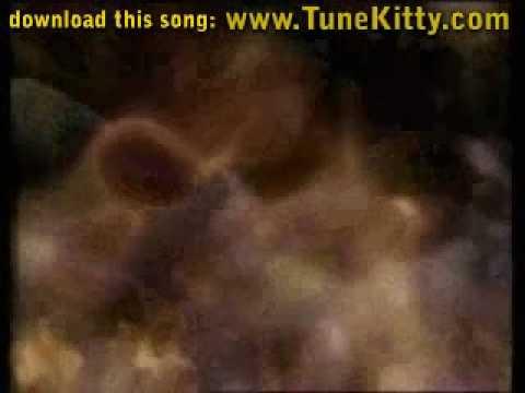 Tekst piosenki Enigma - Weightless po polsku