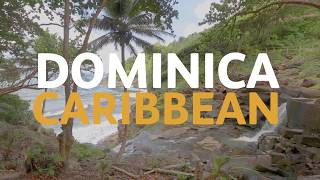 """Dominica's first people, the Kalinago, have welcomed the Queen's Baton with a friendly """"Mabrika, Mabrika!"""" at the cultural village of Barana Autê on the eastern ..."""