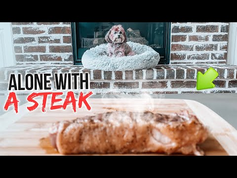 LEAVING MY DOG ALONE WITH A HUGE BEEF STEAK