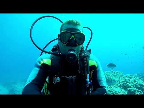 Go To: Manta - Clube de mergulho