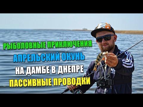 как поймать рыбу на дамбе