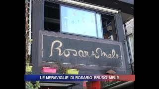 Le meraviglie di Rosario Bruno Mele