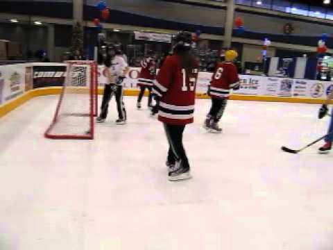 HockeyTowne Fan Fest 2010