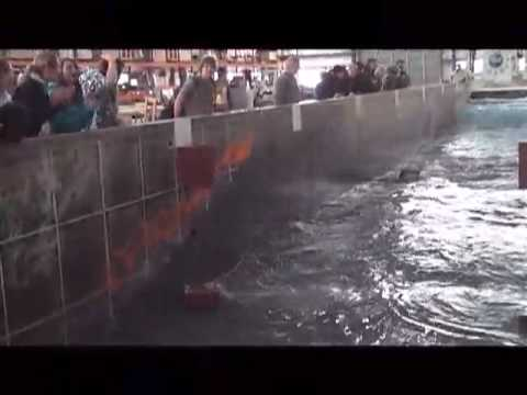 Hurrikan-Wellenmacher