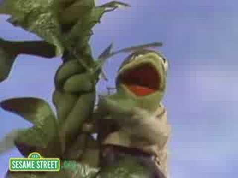 Sesame Street: Jack & The Beanstalk | Kermit News