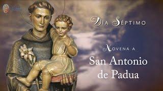 DÍA 7 - NOVENA SAN ANTONIO DE PADUA