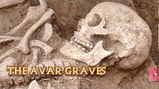 The discovery and excavation of an 8th century burial ground in Nuštar, Croatia.