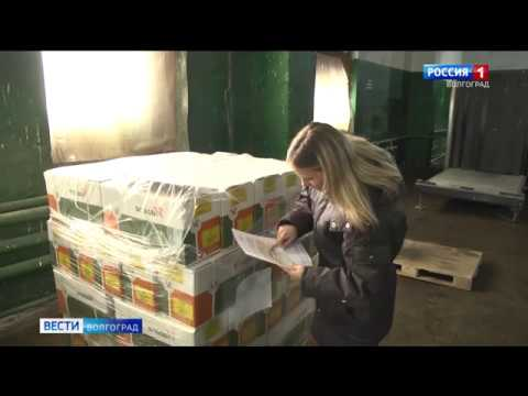 Специалисты Россельхознадзора осуществляют контроль качества импортных семян в Волгоградской области
