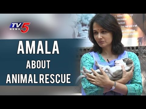 Amala About Animal Rescue & Blue Cross Animal Shelter | Amala Interview | TV5 News