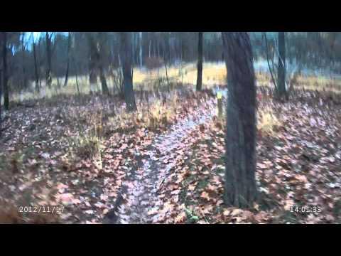 Pleasanton Acura on Ed Littman Mastering Videos   Sense Tube