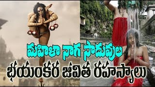 Video మహిళా నాగ సాదుల జీవిత రహస్యాలు !Mysterious & Unknown Facts About  Mahila Naga Sadhu's ! In Telugu ! MP3, 3GP, MP4, WEBM, AVI, FLV Juli 2018