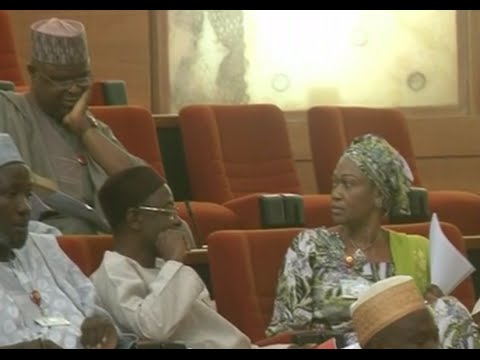 Remi Tinubu Disrupts Senate, Threatens Fellow Senator