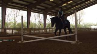 New Vocations Taking Care of Great Ambassadors