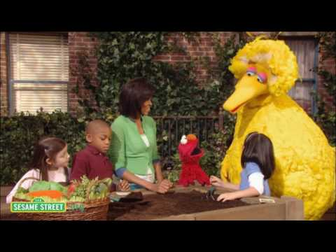 Kevin Fallon breaks down Big Bird's stance on political issues after the cherished muppet was dragged into the presidential race.