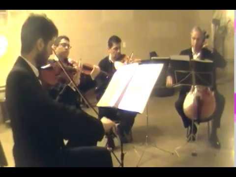 Músicos para Ceremonias