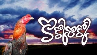 Kokkorokko 2013 Best Telugu Comedy Short Film ( Sankranthi Festival Kodipandalu Background )