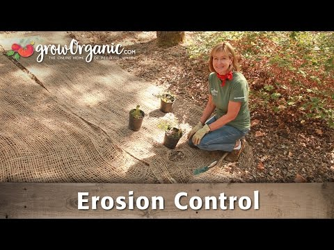 How to Control Erosion