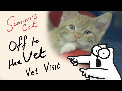 Simon s Cat in Off to the Vet  Vet Visit