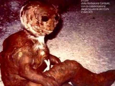 Strange Alien Creature
