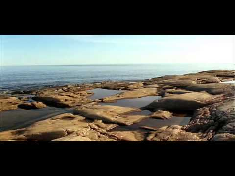 Naturreservat Film01