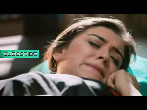 Hansika Motwani Sexiest Seducing Expressions & Cleaveage Show Ever ! Too Hot Latest Release 2016