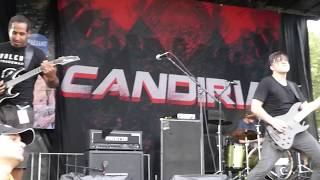 @ Vans Warped Tour, Vinoy Park, St. Pete FL (my camera battery died partway through the song, but I have a full vid of them doing Blood from this show and While They Were Sleeping from the West Palm Beach show)