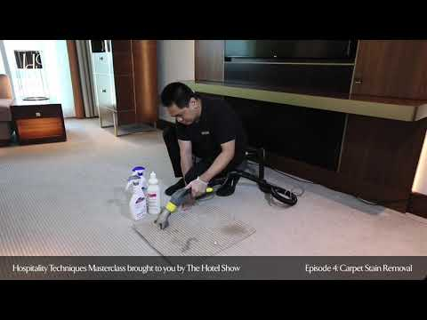 Hospitality Techniques Masterclass | Episode 4: Carpet Stain Removal