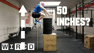 Video Why It's Almost Impossible to Jump Higher Than 50 Inches | WIRED MP3, 3GP, MP4, WEBM, AVI, FLV Januari 2019