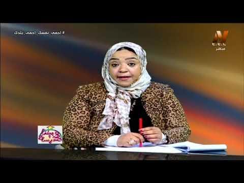 شرح الفعل (الماضي والمضارع والأمر) | لغة عربية تانية ابتدائي