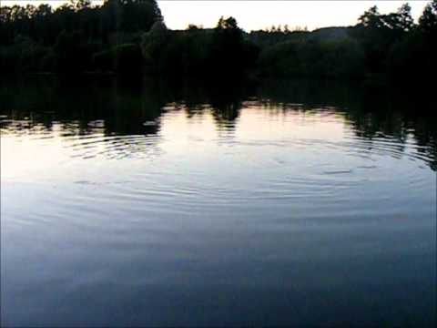 Vallee Lake Video