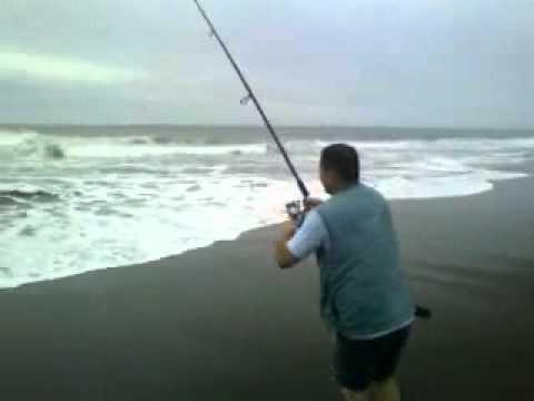 pesca de mar en chile