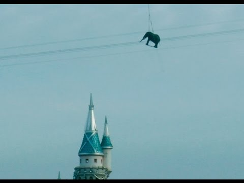 Three Things You Must See! Giant Elephant Was Spotted Over Disneyland, Homemade Hoverbike + Woman Walks Through Minefield!