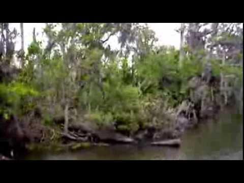 Imagem de Amostra do You Tube