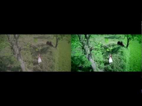 VY OANH – Đồng Xanh and Fly [Visual Effects Breakdown in Post Production HD 2K]