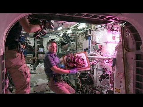 Μαρουλοσαλάτα στο διάστημα!