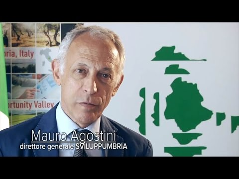 "Agostini: ""Sviluppumbria, the fulcrum of regional growth"""