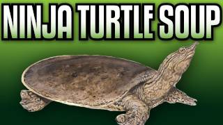 FAV/LIKE!!! We go in hard on the turtle meat and the meat turtles. Sign up for Netflix 1 month free trial! Click Here!