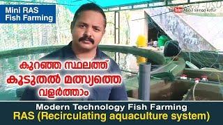 Video Mini RAS Fish Farming  | കുറഞ്ഞ സ്ഥലത്തു കൂടുതൽ മത്സ്യത്തെ വളർത്താം MP3, 3GP, MP4, WEBM, AVI, FLV Desember 2018