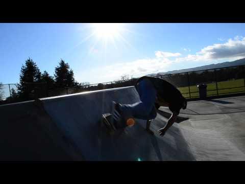 Sonoma Skate Punks