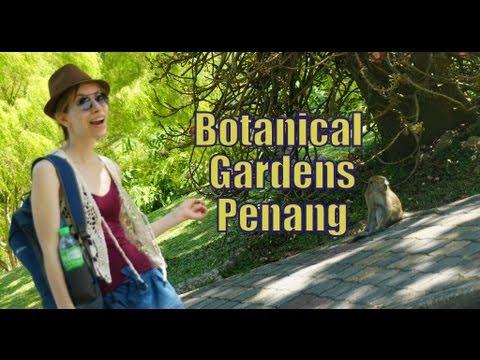 Visiting Penang Botanical Garden